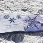 Книга на снегу